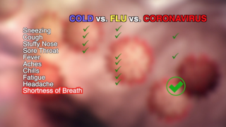 How to tell if you have the coronavirus, the flu or the common cold