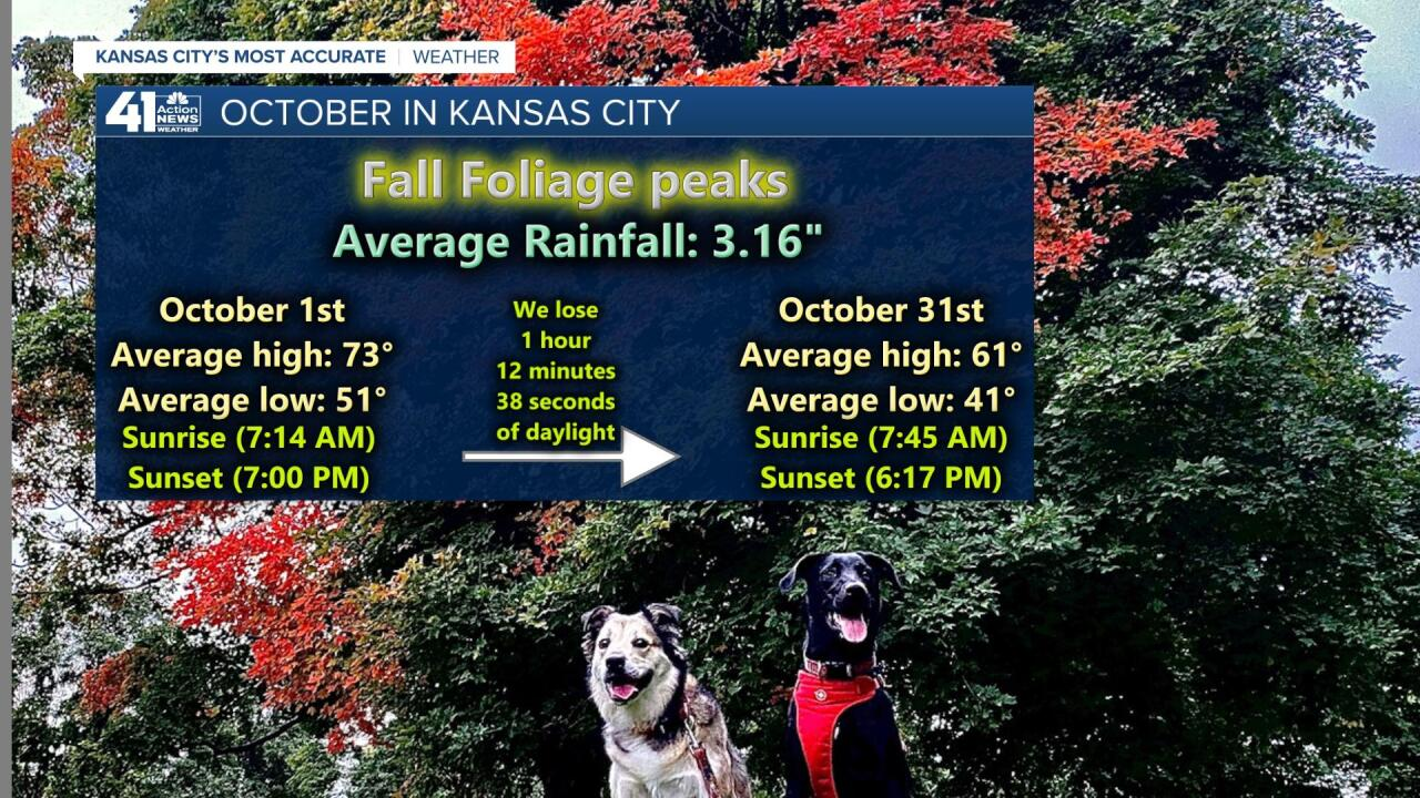 October Averages.jpg