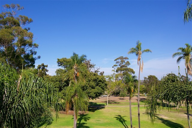 Live with a treetop view of beautiful Balboa Park