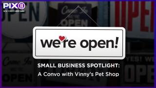 A convo with Vinny's Pet Shop