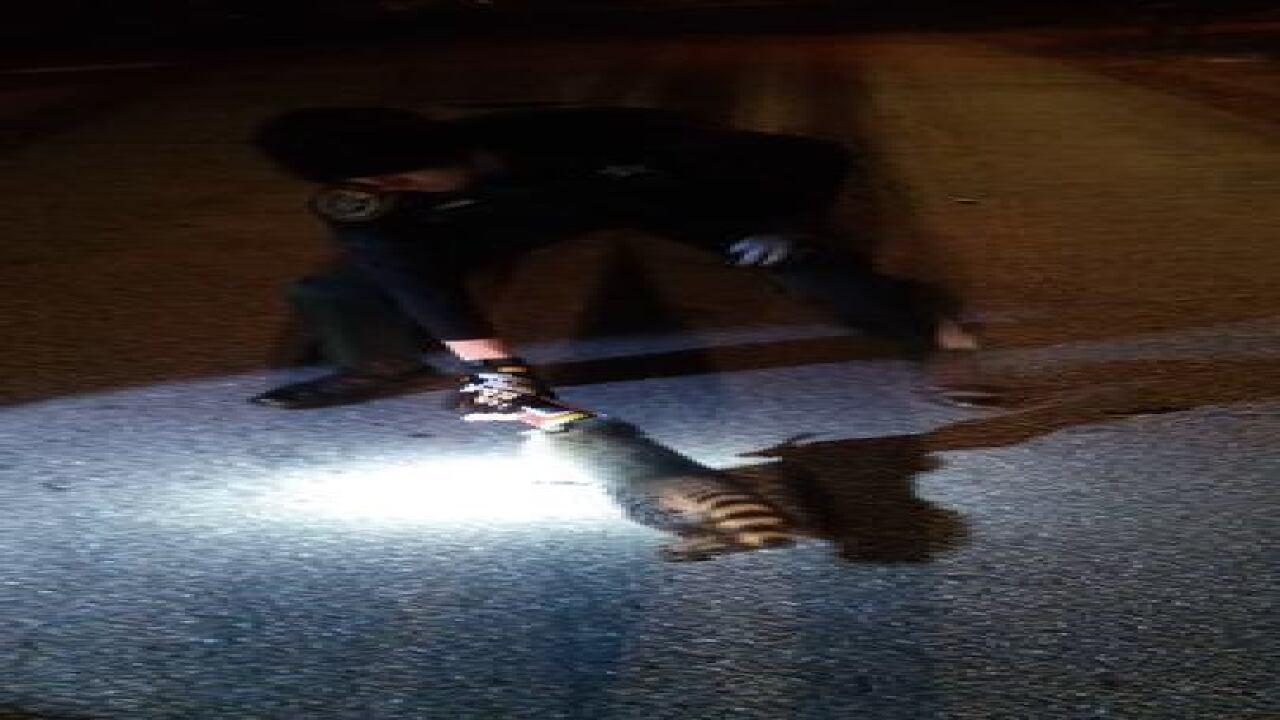 PHOTOS: Deputies rescue raccoon stuck in tin can