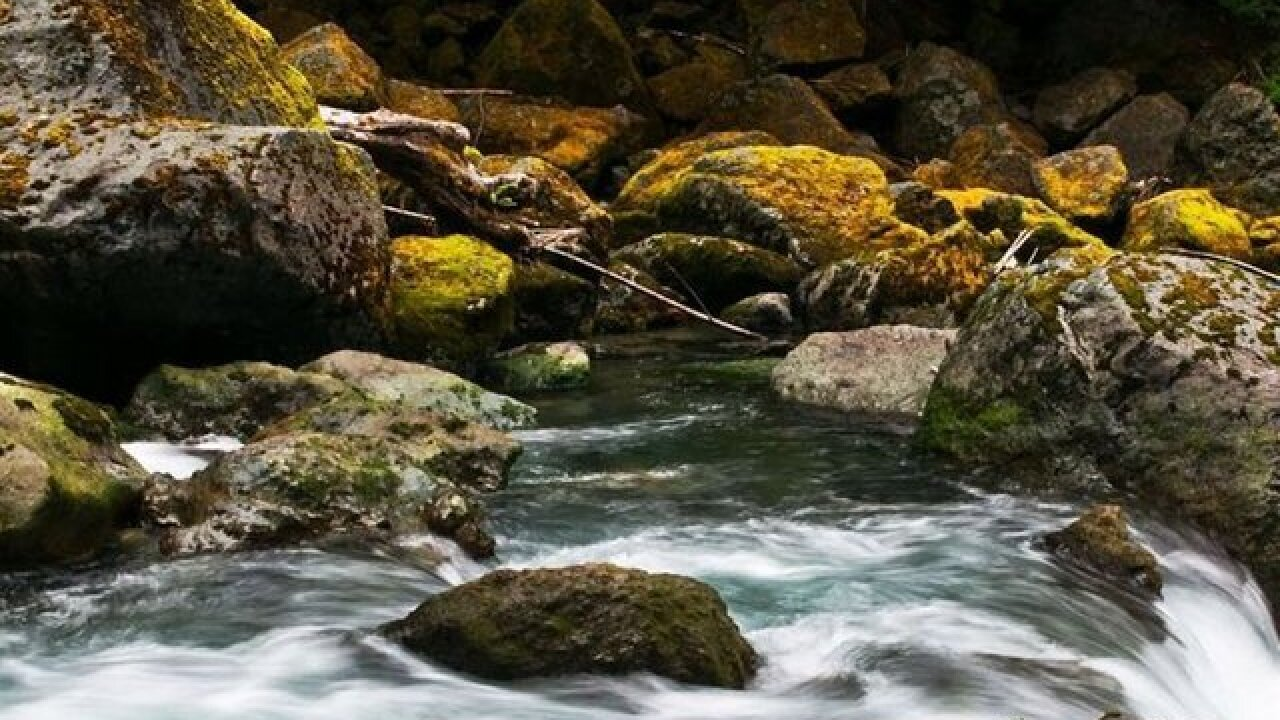 EPA expected to announce new definition of waters protected under Clean Water Act