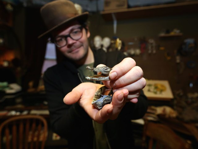 Meddling With Nature: A look inside the world of artistic taxidermy