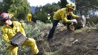 California Governor Wildfire Prevention Claims