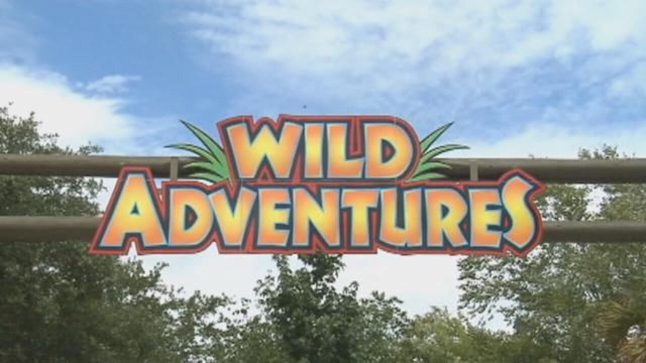 'Wild Adventures Christmas' Shines Bright Through 2016