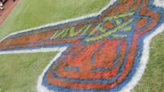 Atlanta Braves tomahawk on the field