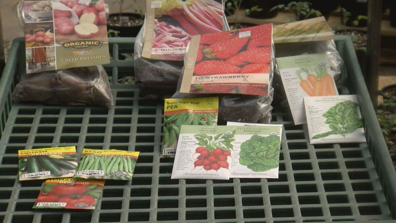 Garden center says more people growing veggies at home