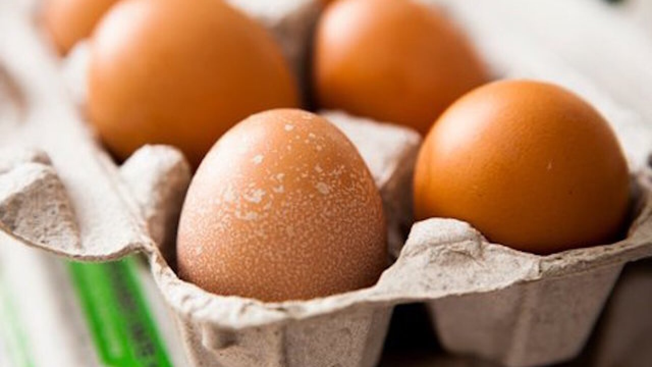 An egg a day might reduce your risk of heart disease, study says