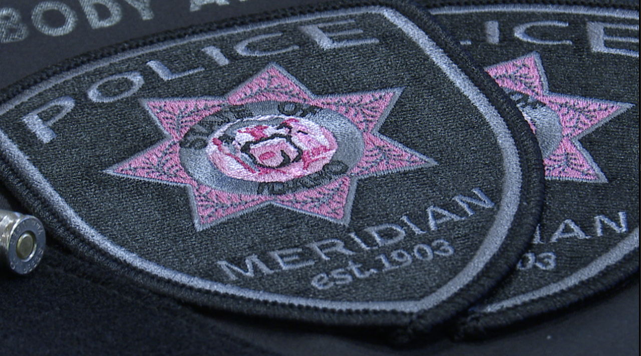 """Meridian Police Department """"Pink Patches"""""""
