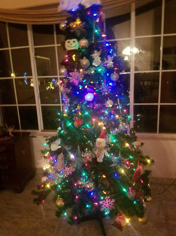PHOTOS: Christmas trees in Las Vegas   2018
