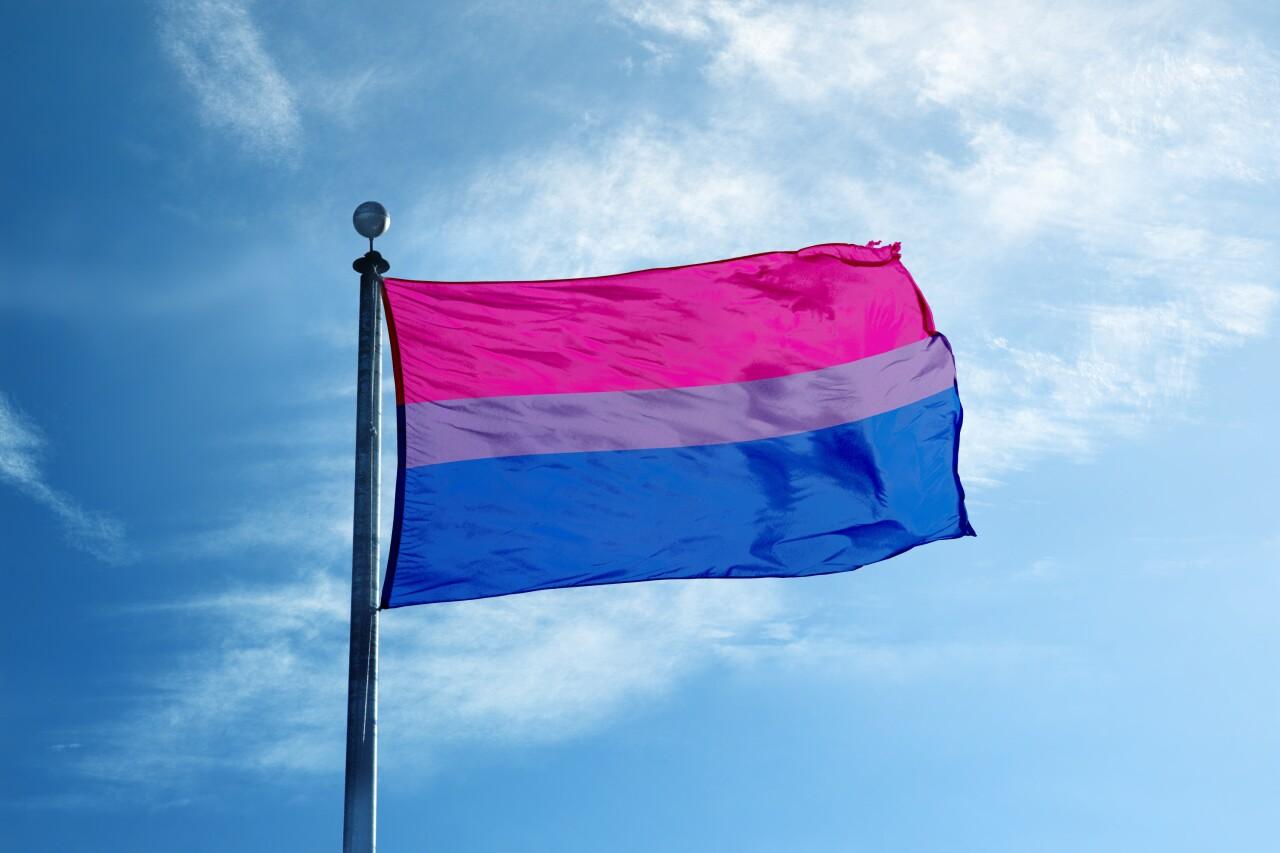 Bisexual,Pride,Flag,On,The,Mast