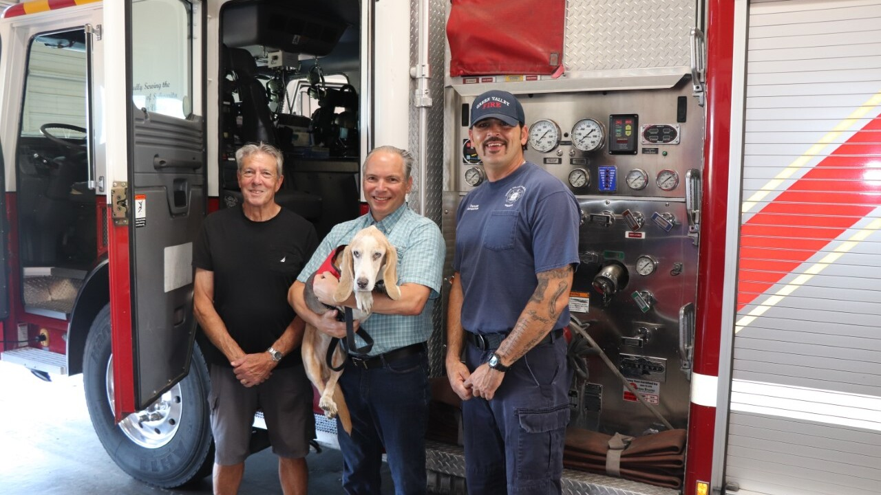 Dog rescues Green Valley man after fall