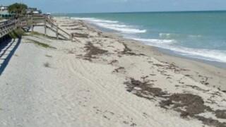 wptv-indian-river-county-beach.jpg