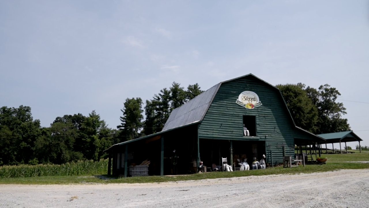 In Hendersonville, North Carolina, agritourism is a financial lifeline that's kept Stepp's Hillcrest Orchard going through the decades.