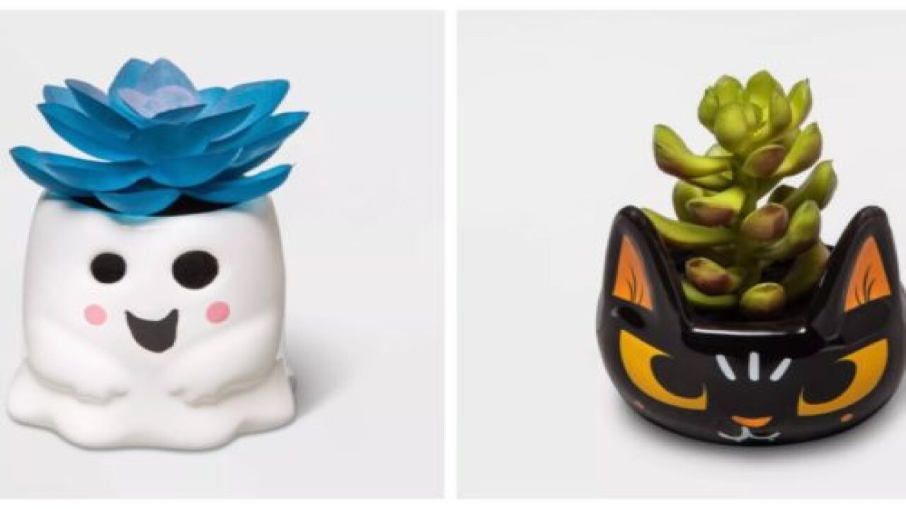 Target Is Selling Adorable Halloween-themed Succulent Planters