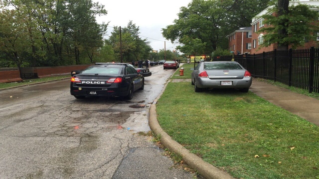 EMS: Adult killed, 10-y-o shot in car on MLK