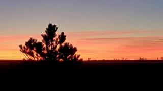 Cindy Craven sunrise