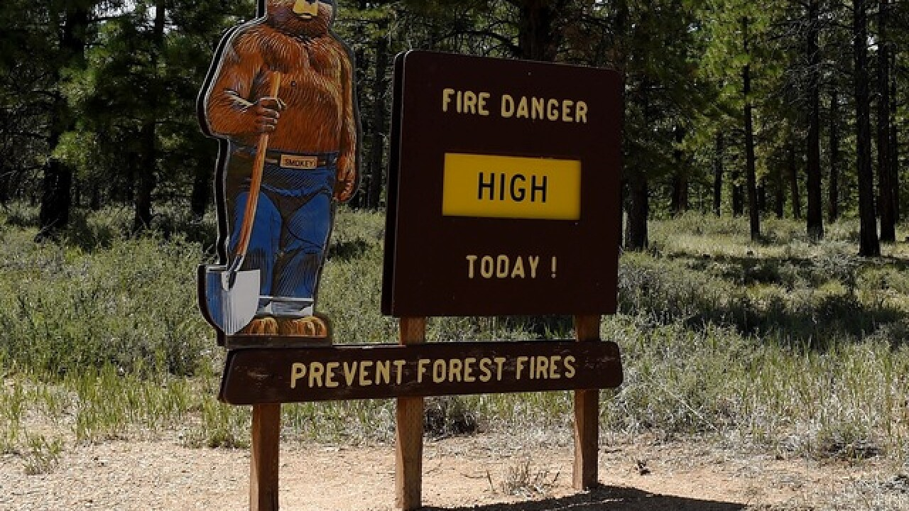 Fire danger remains high in much of Wisconsin