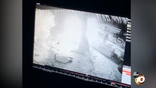 Screen Shot 2019-12-13 at 2.49.25 PM.png