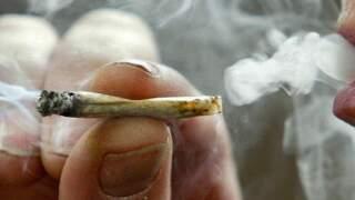 PBC commission decriminalizes marijuana