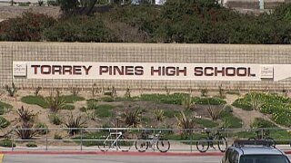 Man who issued online threat to Torrey Pines High given jail time