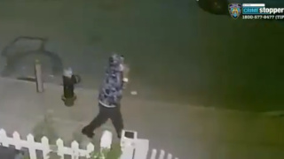 nyc shooting 10-year-old boy.PNG