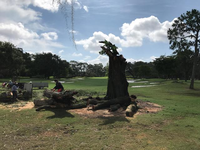 Storm damage closes Forest Country Club golf courses through June 9, 2017