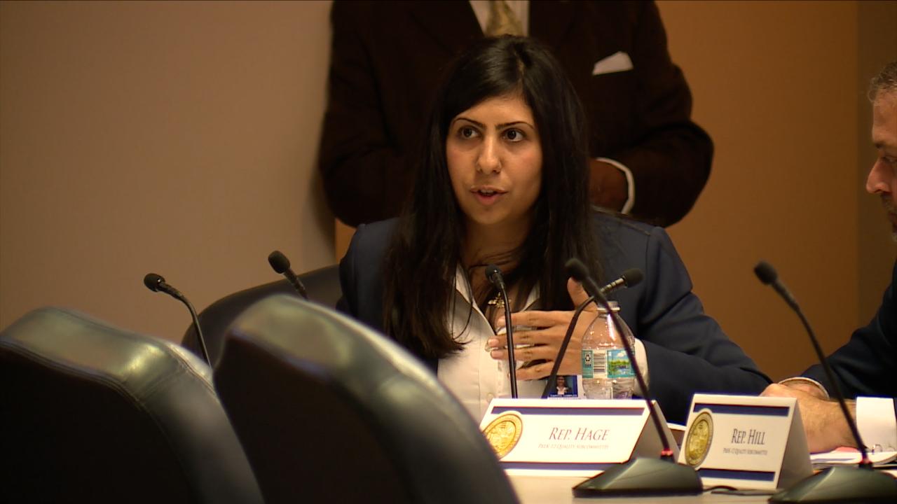 Representative Anna Eskamani (D) of Orlando