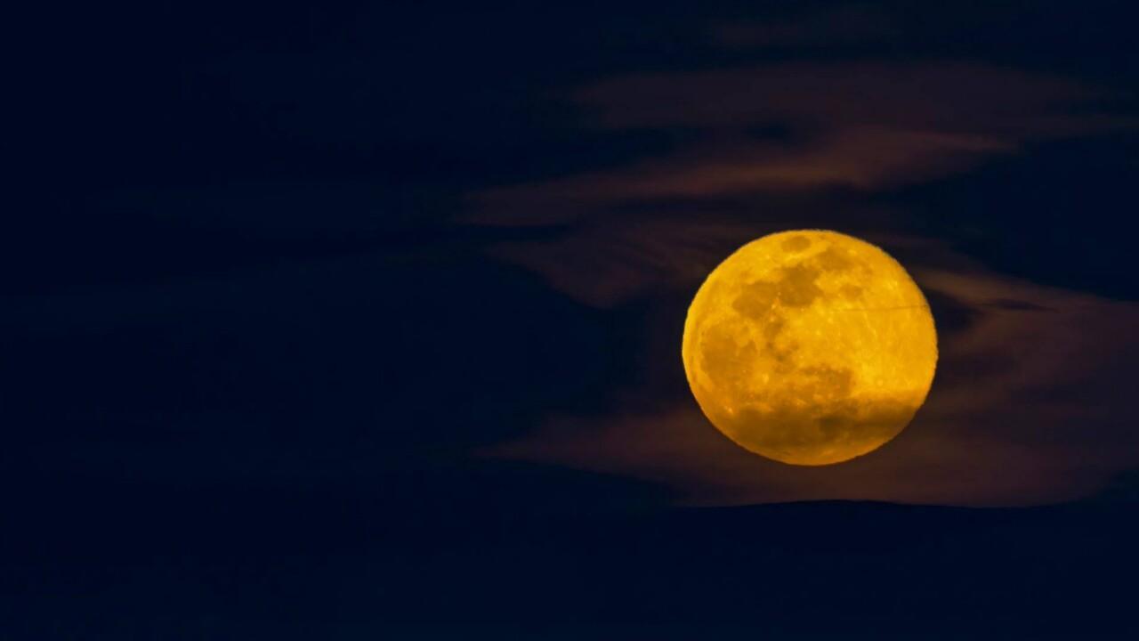 Larry Marr Worm Moon.jpg