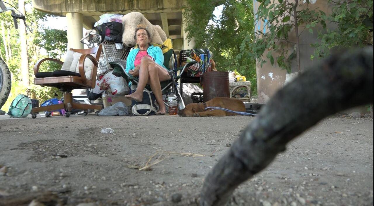Homeless Camping under bridges