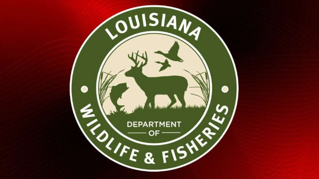 LDWF: Boat registration prices raise in 2019