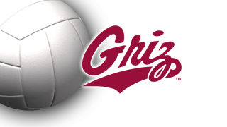 Montana Grizzlies volleyball logo