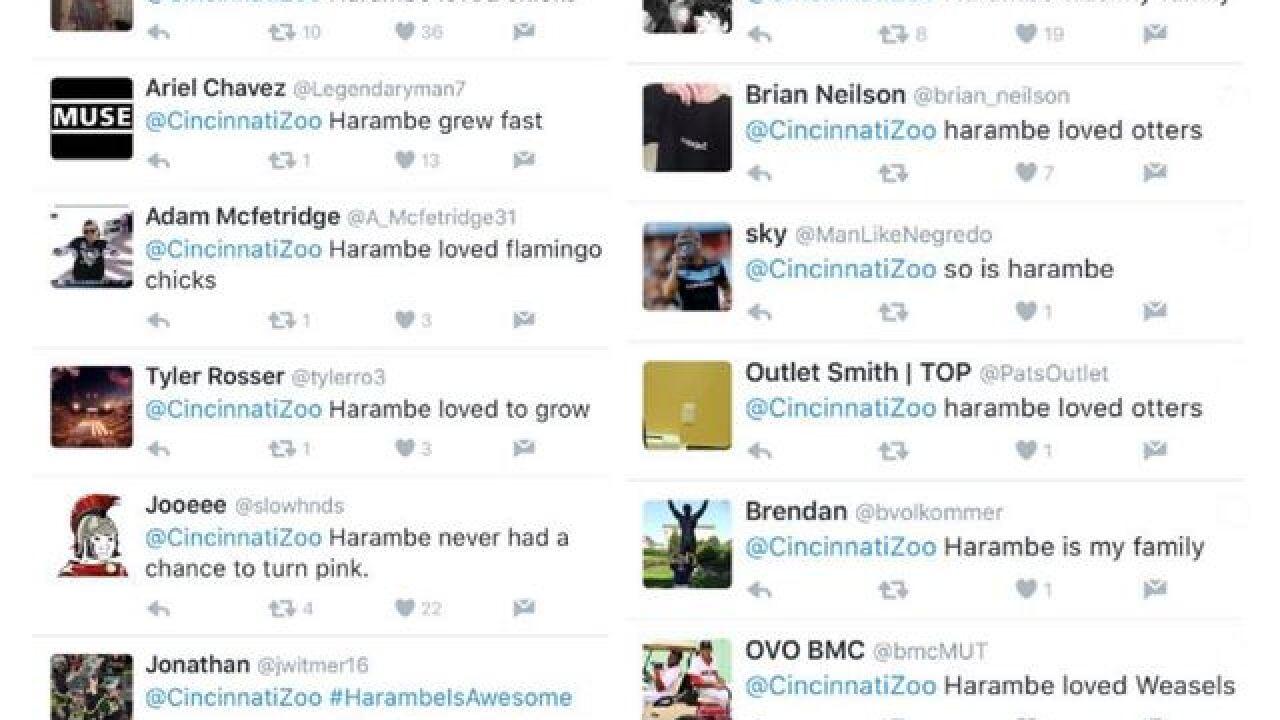 Cincinnati Zoo deletes Twitter account