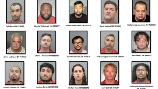 CHILD SEX PREDATOR ARRESTS