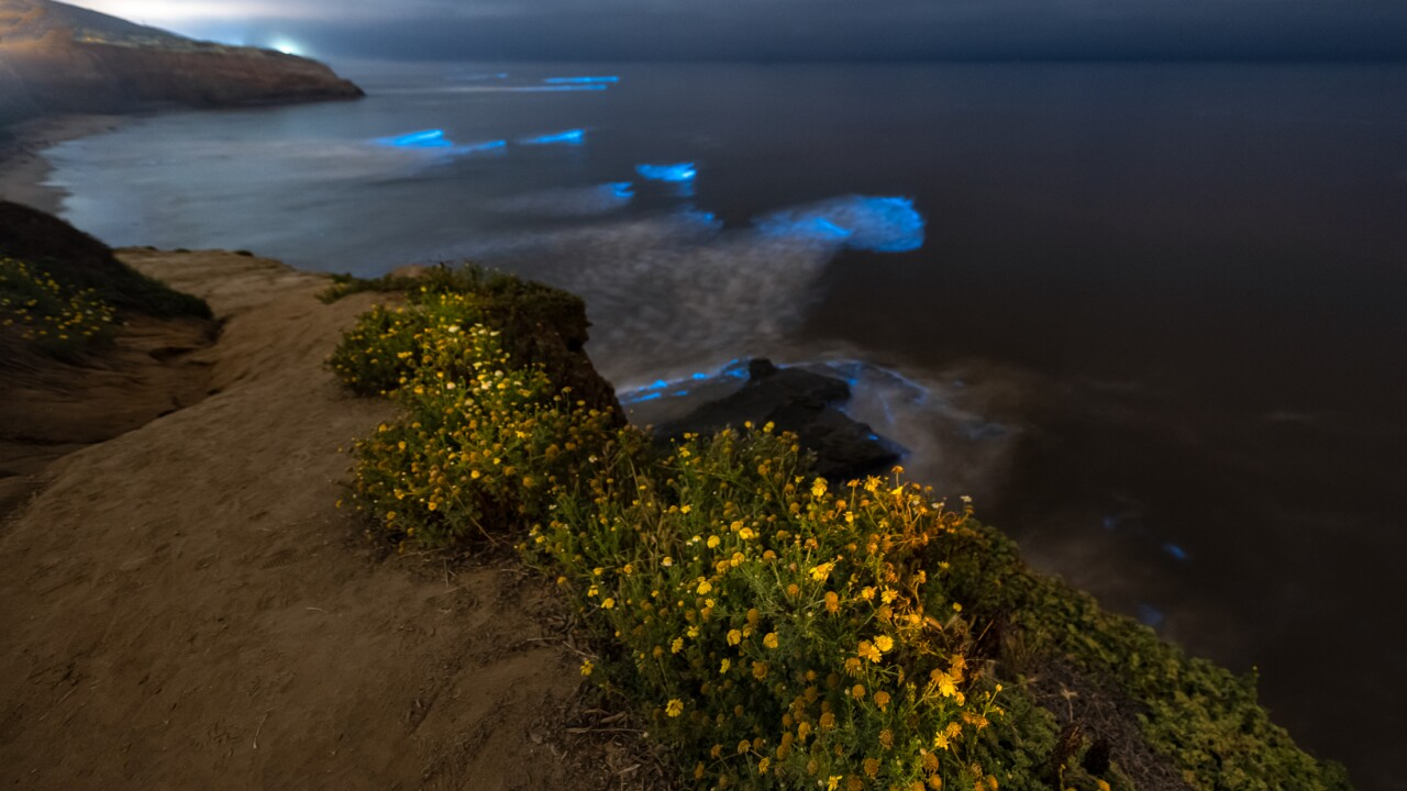 SunsetCliffs5.jpg