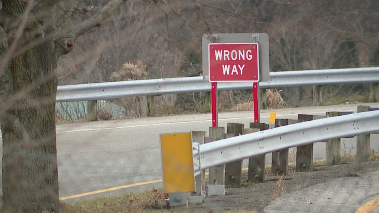 Wrong-way drunk driver