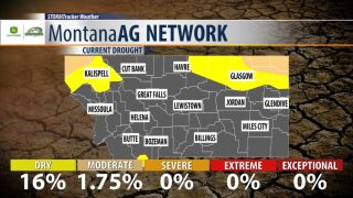 Montana Ag Network Weather: June 20th