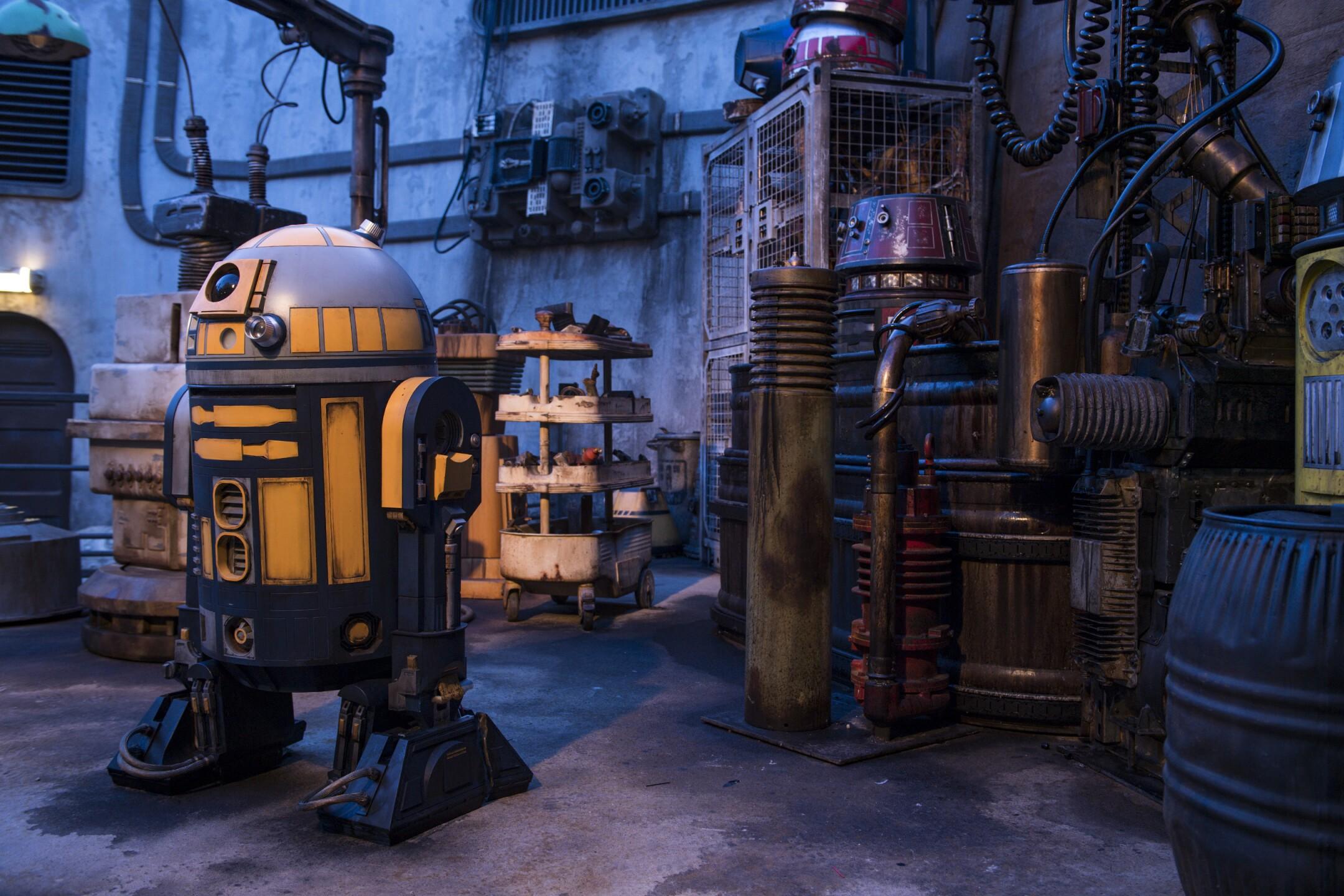 Star Wars: Galaxy's Edge Immersive Detail