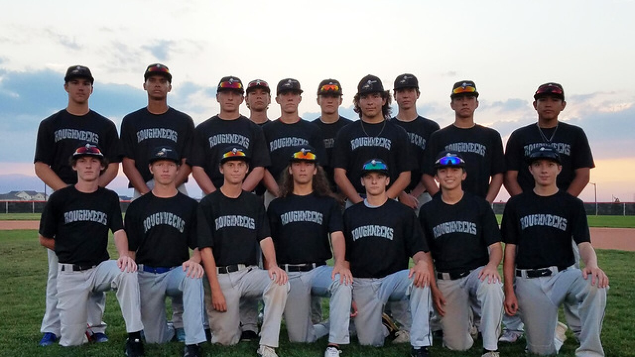 First time baseball team plays together, they make it to nationals