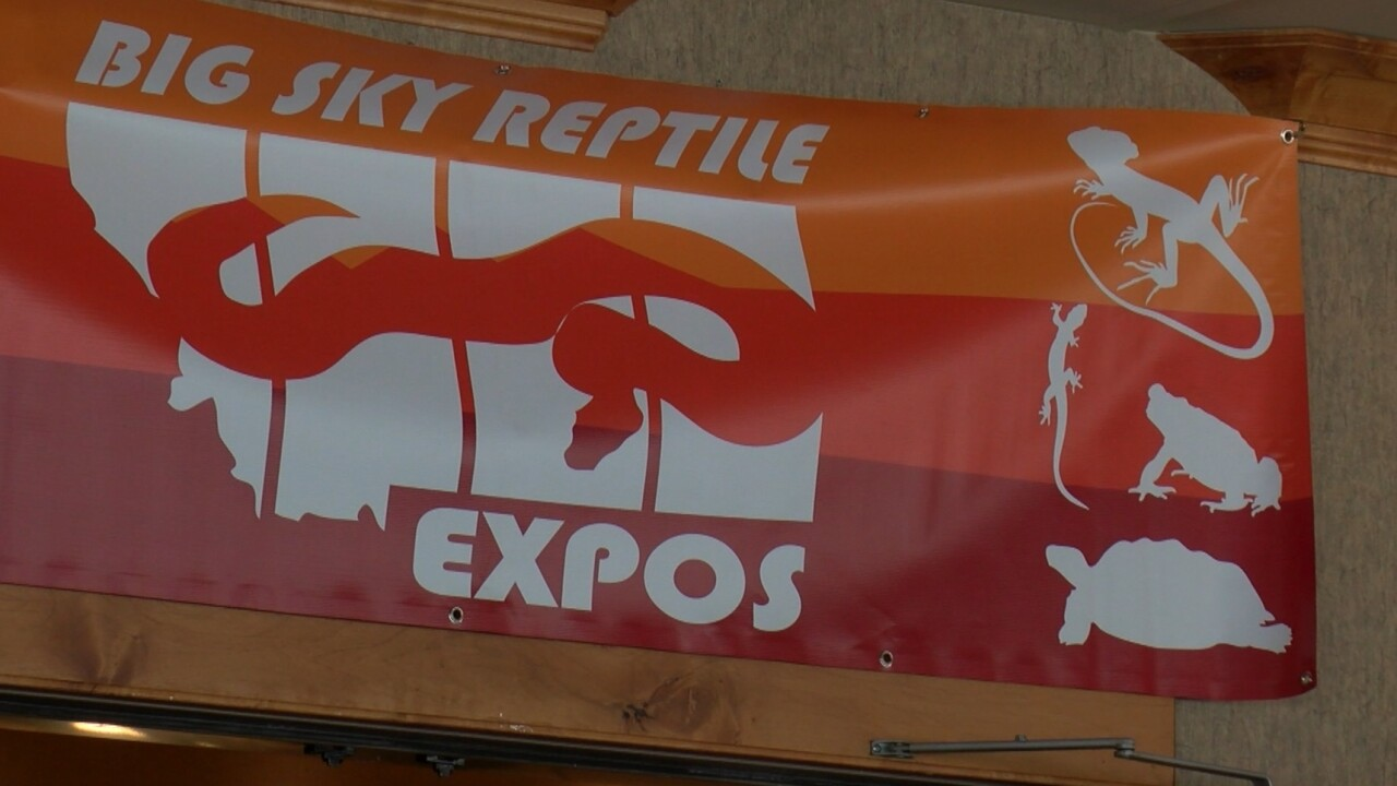 Big Sky Reptile Expo returns after pandemic