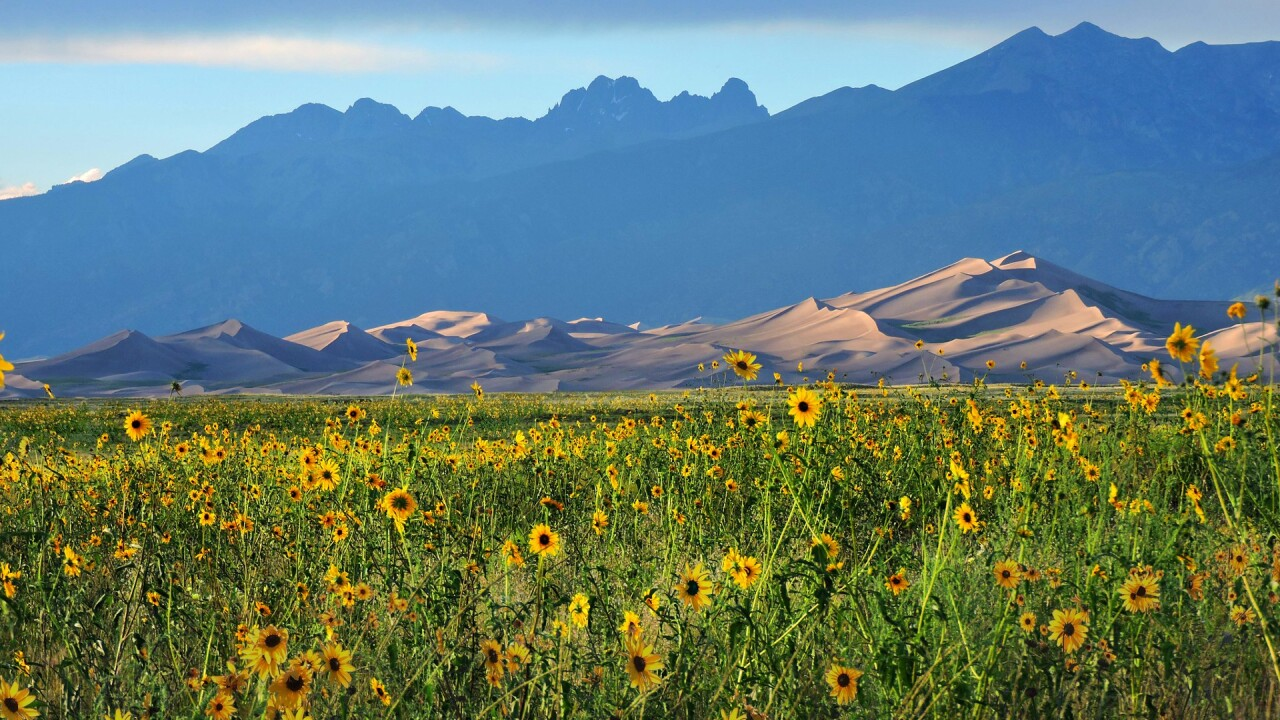 Great Sand Dunes National Park and Preserve 25.jpg