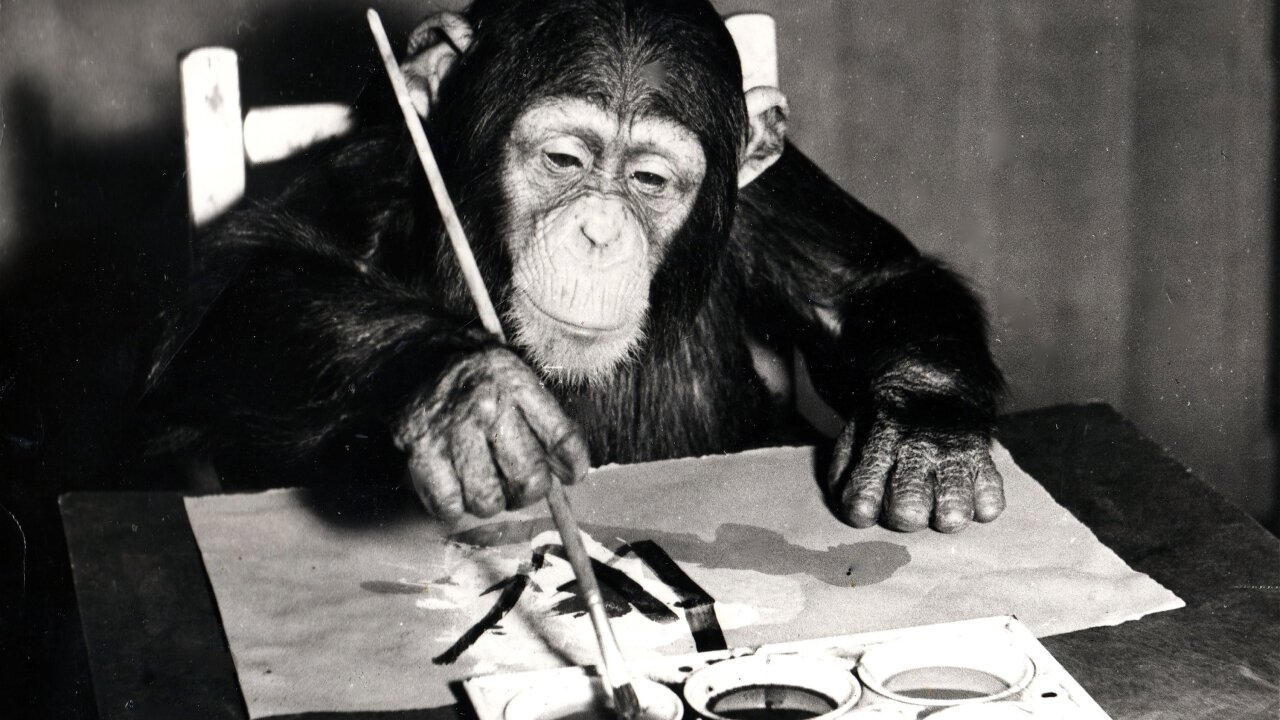 Chimp Paintings