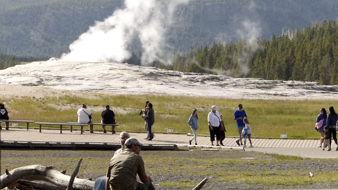 Positive COVID-19 tests reported in Yellowstone National Park