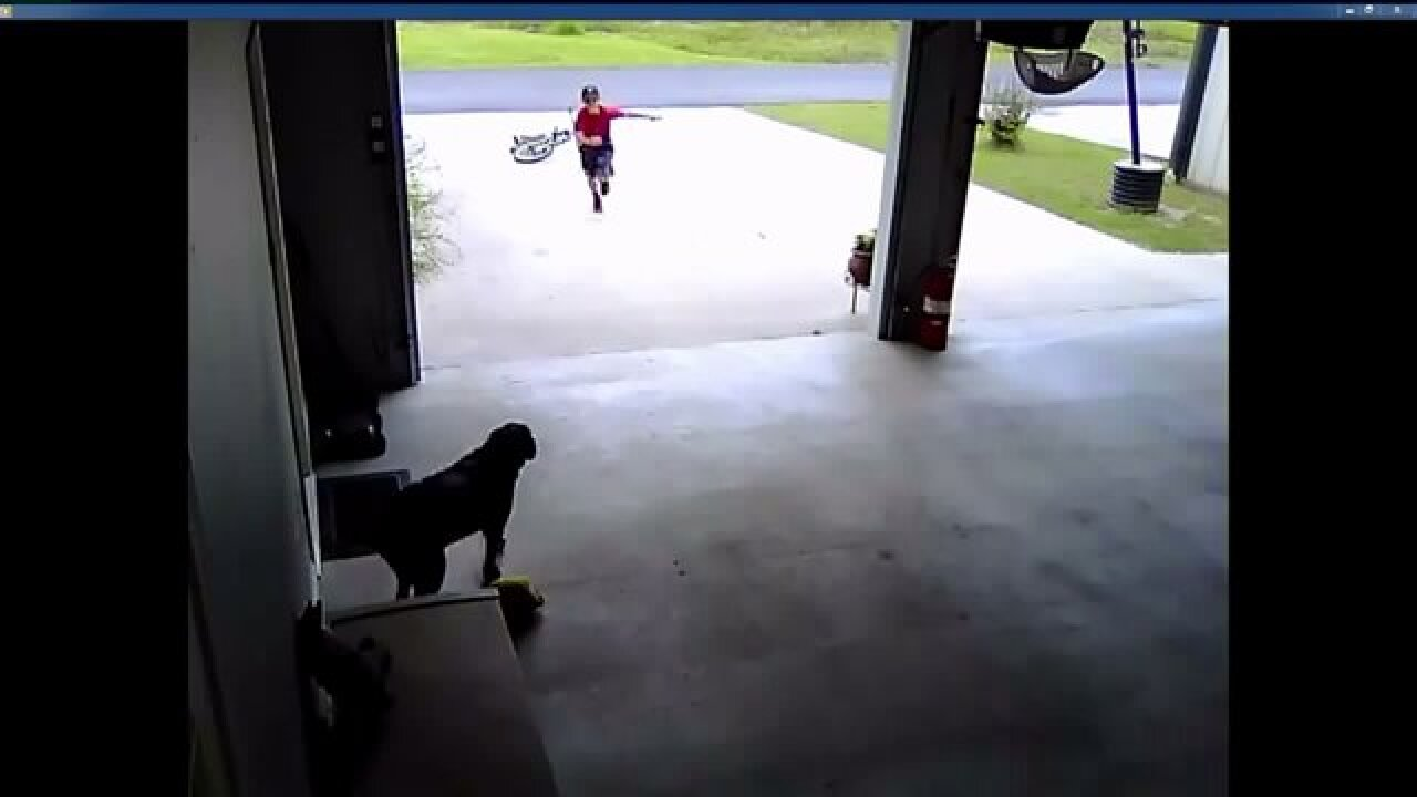 Boy caught on video sneaking into neighbor's garage to hug dog
