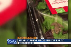 Frog found in family's salad