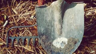shovel rake dirt