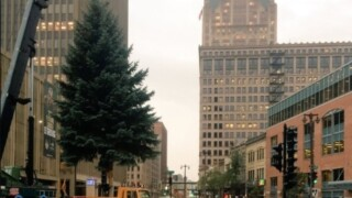 Milwaukee City Hall Christmas Tree transport may cause traffic delays