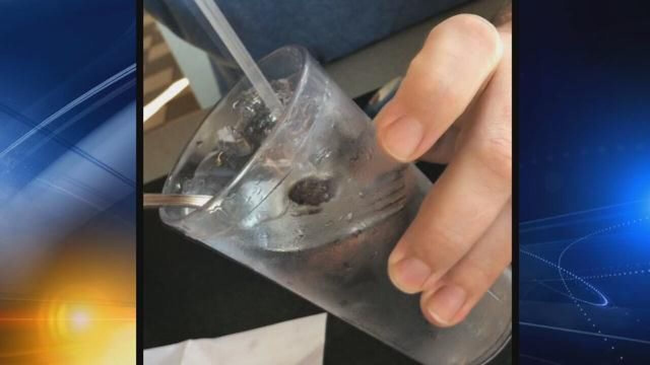 Frog found in drink from Tallahassee Waffle House