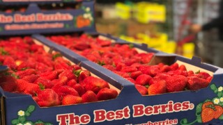 Historic Los Angeles produce market loses majority of business due to pandemic