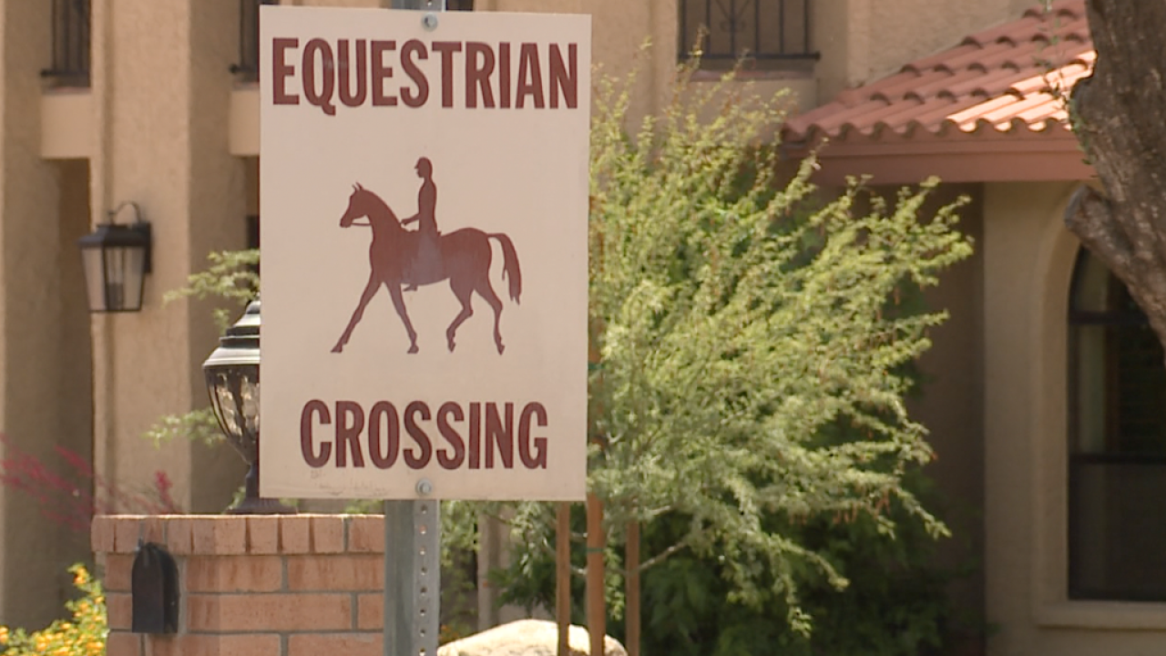 Horse Crossing.png